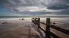 The Warren - Low tide-2