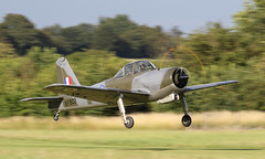 Photo of Panned Piston Provost