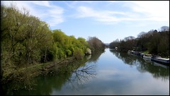 Photo of RIVER THAMES, DOWNSTREAM