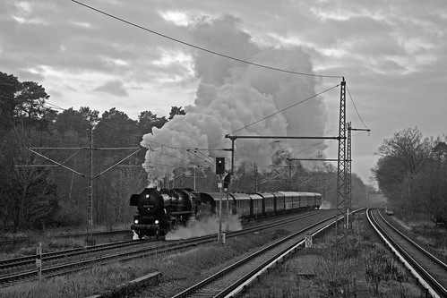 Stoomloc 52 8177 + Sonderzug Potsdam Hbf - Berlin Gesundbrunnen  - Griebnitzsee