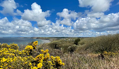 Photo of Coast Wales