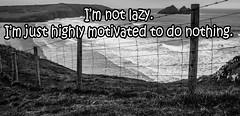 Photo of Motivation