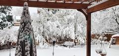 April 16, 2021 - A snowy scene in Thornton. (Jennifer McNeil)