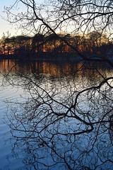 Photo of A day in the life of Talkin Tarn
