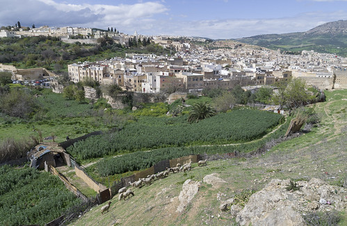 View over Medina of Fes, 21.03.2015.