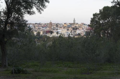 Medina of Meknes, 21.03.2015.