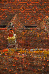 Photo of Rooftops of Rye