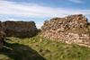 Ardross Castle  4