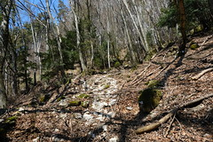 Ancien chemin rural