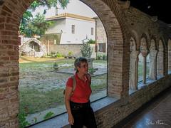 Around Mogliano Veneto