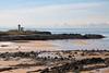 Elie Ness Lighthouse  14