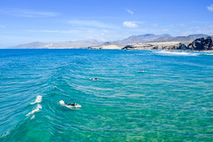 Surfing at the beach Playa del Viejo Reyes in la Pared on Fuerteventura, Canary Islands