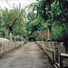 Altamura, Viale Regina Margherita, Villa
