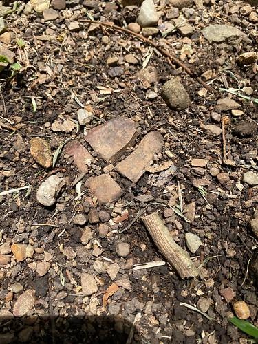 Gira arqueoastronómica al Delta del Diquís, Osa, abril 2021