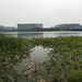 New Tianjin