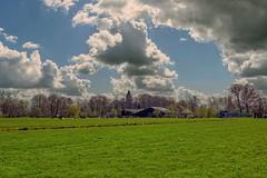 Hekendorp - Polder Stein - Zuid-Holland - NL
