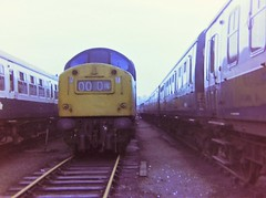 Photo of 40162 at Haymarket, 10th August 1980