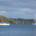 Boats and blue buoys