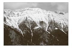 Black & white quasi-abstract landscape