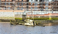 Photo of wrecks in the river Leven