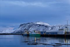 Safe harbour | Au port