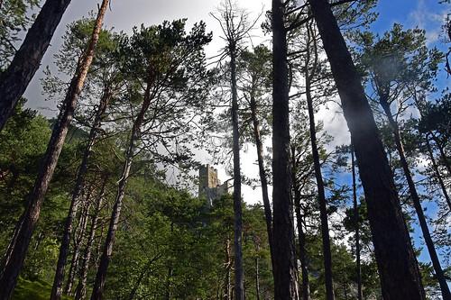 Blick auf die Ruine Schrofenstein