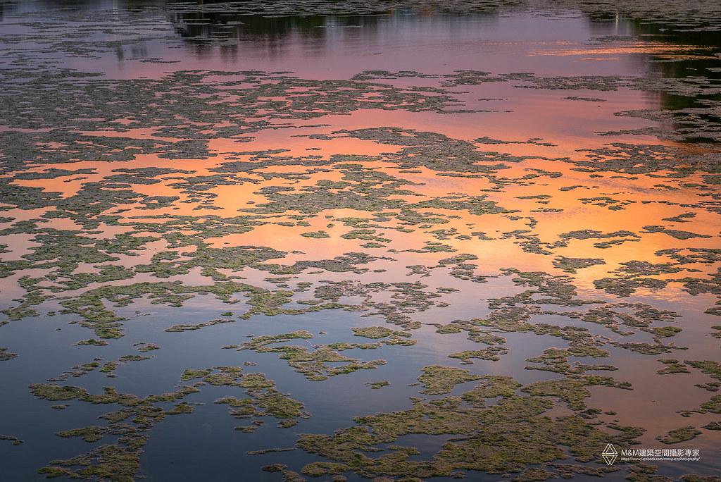 澄清湖夕陽-10