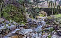Ruisseau et Pont du Vialais