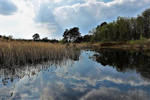 Nature park De Teut