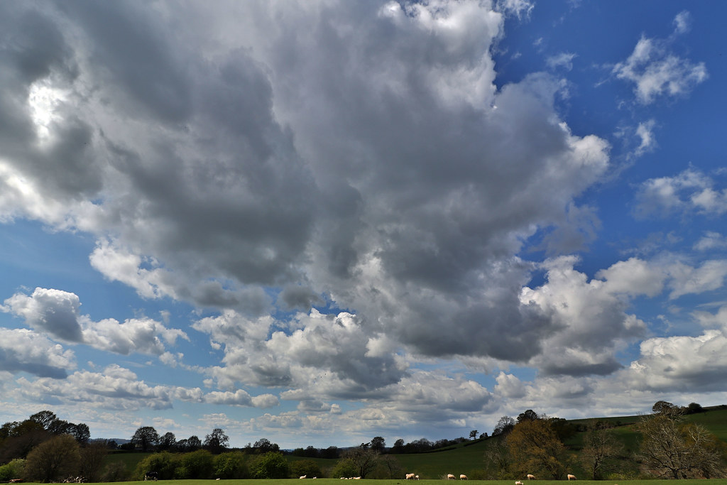 Cloudy Skies.