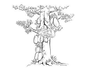 பலா மரம்
