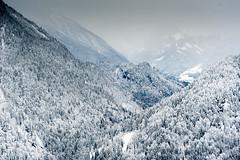 Abtenau Salzburger Land Tal mit Winterlandschaft I