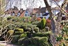 Turmoil of Topiary