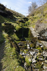 Photo of Waterfall in a creek