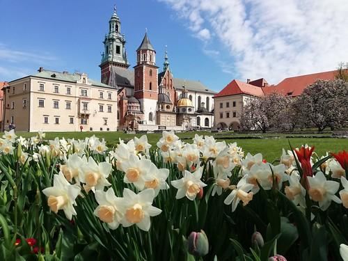 Kraków 2021