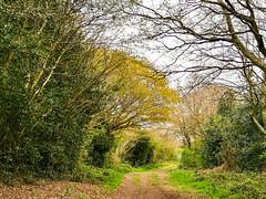Burntwood, England