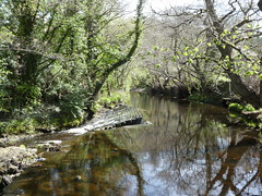 Photo of River Rivelin