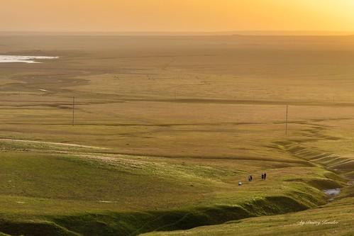 In the vastness of Kalmykia