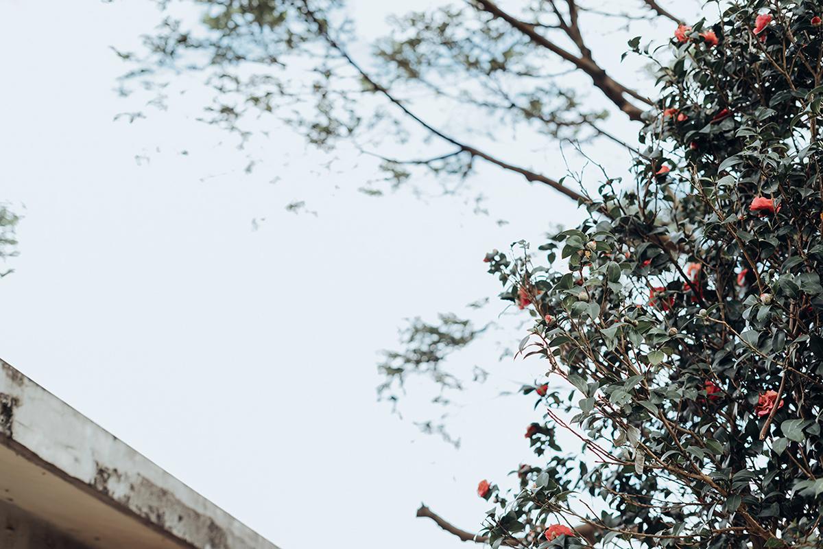 台北婚攝,美式婚禮,婚攝作品,婚禮攝影,婚禮紀錄,1956 Vintage,陽明山美國渡假村,戶外證婚,類婚紗,麋先生,wedding photos