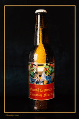 Girona Cervesa Temps de Flors