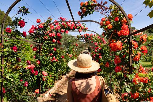 La villa Eleinroc un lieu d'exception sur la Côte d'Azur à Antibes Juan-les-Pins -3D0A2150