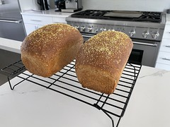 Anglų lietuvių žodynas. Žodis anadama bread reiškia anadama duona lietuviškai.