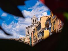 Girona - Girona - Catedral emmarcada. En Temps de Flors