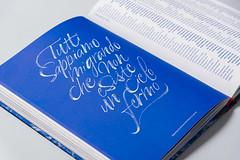 Calligraphy x RUFA Annual Report