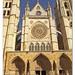 León, catedral