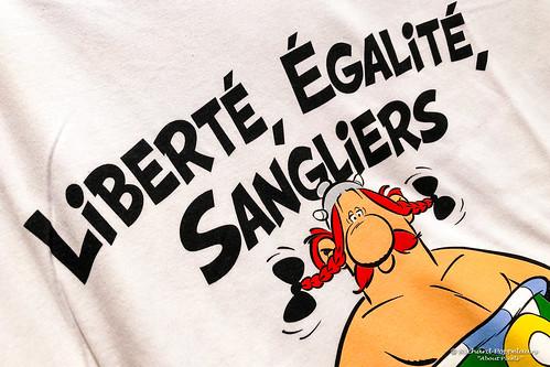 Liberté - Égalité - Sangliers! - Parc Astérix (Plailly/FR)