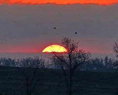 May 15, 2021 - The sun creeps over the horizon. (Bill Hutchinson)