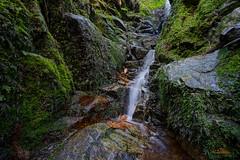 Kleiner Seitenarm des Windbergwasserfalls