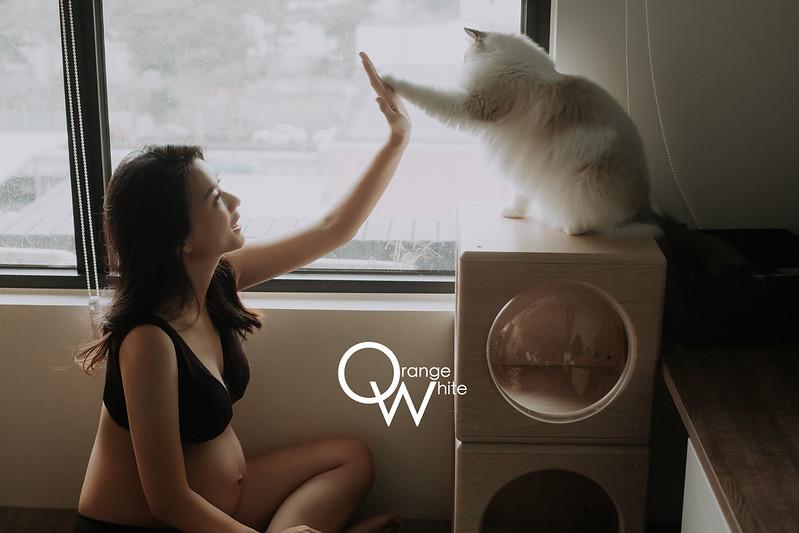 橘子白,攝影工作室,雙北,孕婦寫真,到府,孕婦照,孕媽咪,寵物寫真,Anita俐婷,妊娠寫真,便宜,貓,布偶貓,優質推薦,寵物