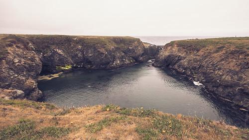 Sea Lion Cove, Point Cabrillo 5/16/21
